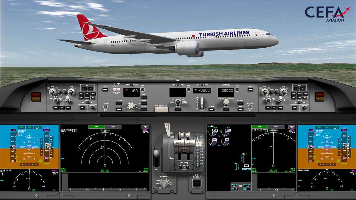Flight Data Animation